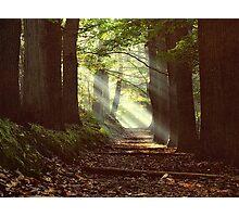 Devil's mountain light Photographic Print
