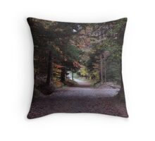 Country ride to the lake Throw Pillow