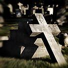 Fallen but not Forgotten by hampshirelady