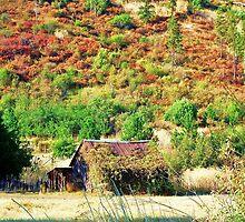 Autumn's Return by trueblvr