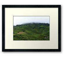 Cloudy Tea Farm Framed Print