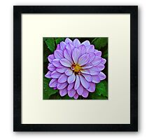 Natues Gift, God Creation #2 Framed Print