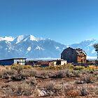 Old homestead in San Luis Valley Colorado by Merja Waters