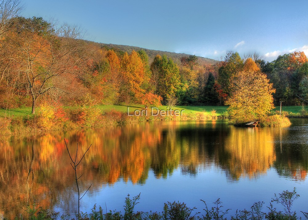 Reflections of Gold by Lori Deiter