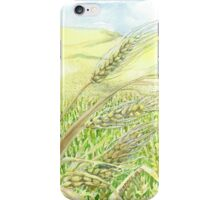 Wheat Fields Ready for Harvest iPhone Case/Skin