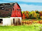 The Old Red Barn by Marcia Rubin