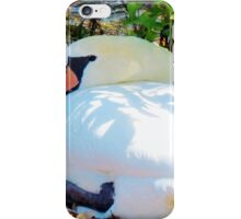 Swan On Her Nest iPhone Case/Skin