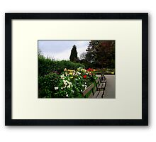 Around The Bench Framed Print