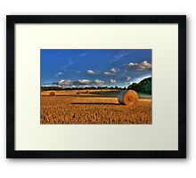 Ready For Collection Framed Print