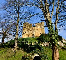 Guildford Castle 5 by Lisa Williams