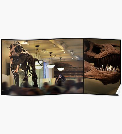 T-Rex Two   Poster