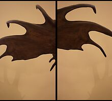 Antlers Two by MontiFoxPhoto