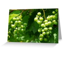 Clusters of White Grapes Greeting Card