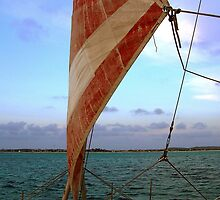 Sunset Sail in Aruba  by John  Kapusta