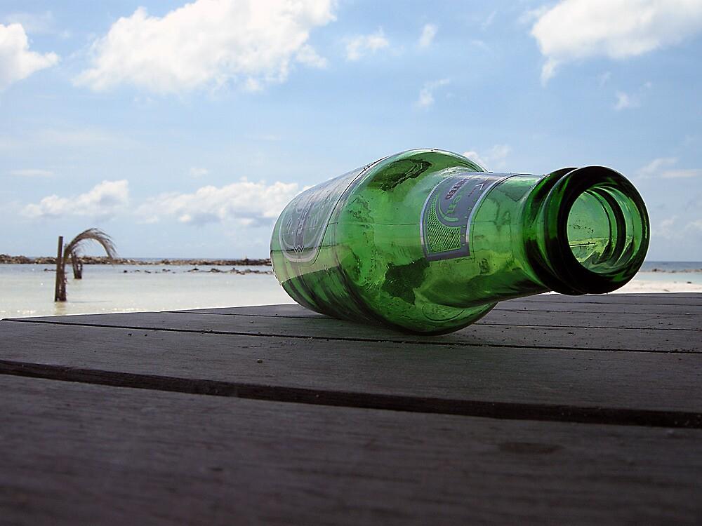 Tipsy at Baby Beach  by John  Kapusta