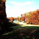 Autumn In Missouri by barnsis