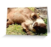 Playful Otter Greeting Card