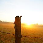 Foggy sunrise and fence post by agenttomcat