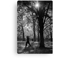 Dark trees Canvas Print