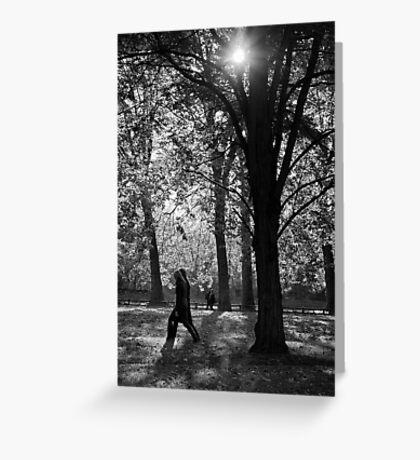 Dark trees Greeting Card