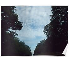 Sky through forest Poster