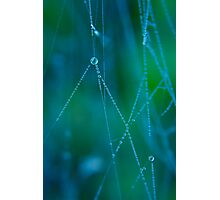 Autumn Web Photographic Print