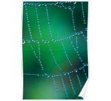 Spider Web Dew Poster