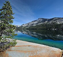 Tenaya Lake by Ted Lansing