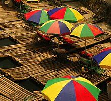 Umbrellas on the Li River, Guangxi, China by strangelight