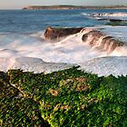 Shoreline at Maroubra by Ian Berry