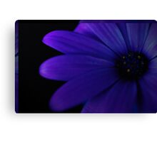 Indigo Edge Canvas Print