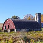 The rounded barn by vigor