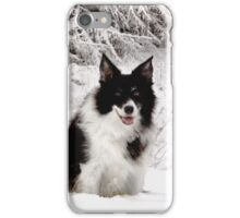 The Border Collie iPhone Case/Skin