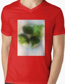 We Have a Little Garden Mens V-Neck T-Shirt