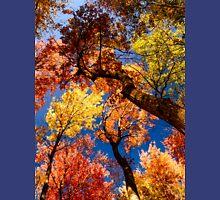 Autumn dance Unisex T-Shirt