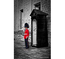 On Guard Photographic Print
