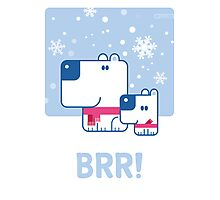 BRR! Poster Photographic Print