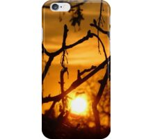 Staring at the Sun iPhone Case iPhone Case/Skin