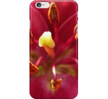 Inside The Dreams I Knew iPhone Case iPhone Case/Skin
