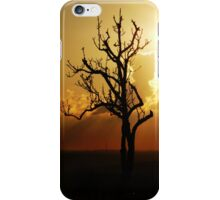 The Tree That Once Was iPhone Case iPhone Case/Skin