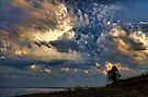 One Tree And A Great Sky by Carolyn  Fletcher