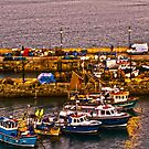 Fishing Boats of Newquay by Brian Roscorla
