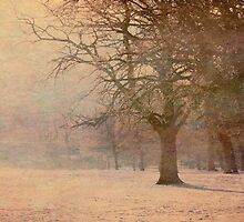 A Winters Tale  by Nicola  Pearson
