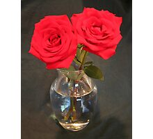 Two Red Roses Photographic Print