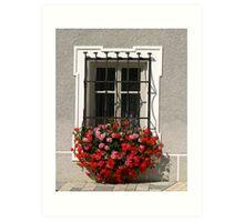 Wrought Iron & Flowers. Art Print