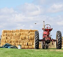 Tractor and Hay  by mltrue