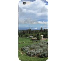 Ali'i Kula Lavender Field  iPhone Case/Skin