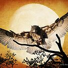 Eagle Owl And The Moon by Kathy Baccari