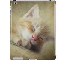 Soft Kitty, Warm Kitty, Little Ball of Fur iPad Case/Skin