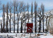 Red Barn by teresalynwillis
